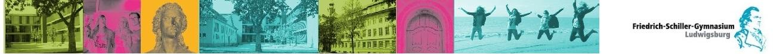 Herzlich Willkommen im moodle des Friedrich-Schiller-Gymnasiums Ludwigsburg